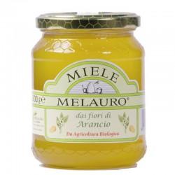 Miele di Arancio Biologico - Melauro - 500g