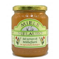 Miele di Millefiori Biologico - Melauro - 500g