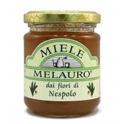 Miele di Nespolo Biologico - Melauro - 250g